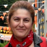 Jelena Vlajic | Queen's University Belfast - Academia.