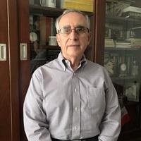 Rolando Neri Vela Universidad Nacional Autonoma De Mexico