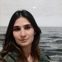 979870fe1 (PDF) Carmen Miranda, Marca Brasil and national identity- a historical  glance- ICDHS | Káritha Macedo - Academia.edu