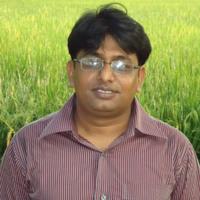 Sheikh Muhammad Masum Sher E Bangla Agricultural