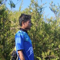 Ekosistem Pantai Berpasir Keanekaragaman Hayati Laut Zaim Robithin