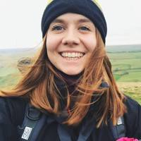 Cheap essay writer services uk