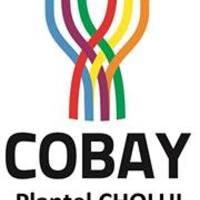 Cobay