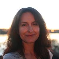 transnational women s fiction strehle susan dr