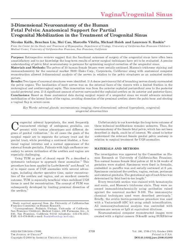 PDF) 3-dimensional neuroanatomy of the human fetal pelvis