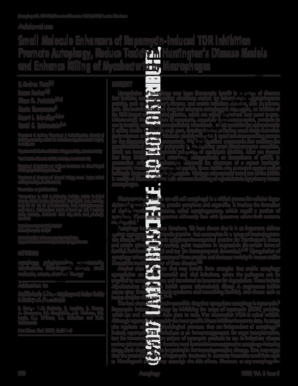 IJMS | Free Full-Text | Inhibition of Autophagy Promotes