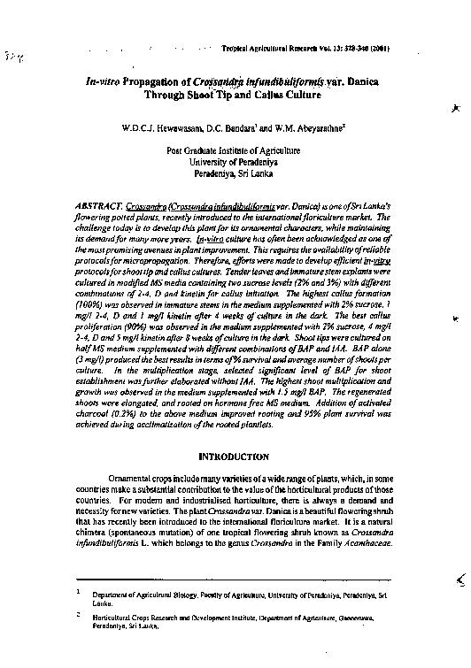 seinen Beinen - Traducere în română - exemple în germană | Reverso Context