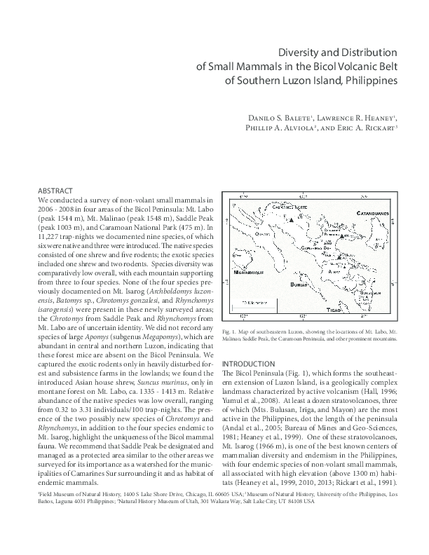 PDF) Diversity and Distribution of Small Mammals in the Bicol