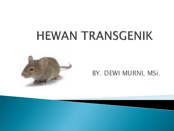 26+ Gambar hewan transgenik terbaru