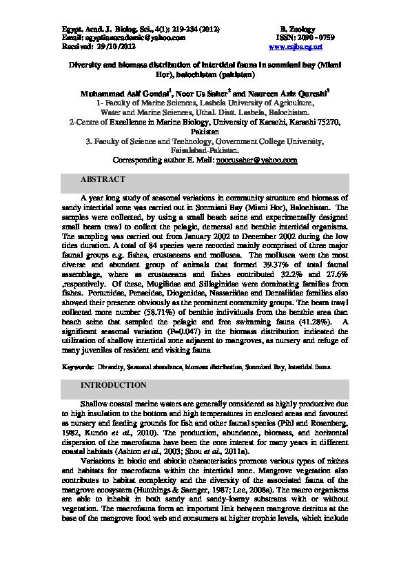 PDF) Diversity and biomass distribution of intertidal fauna