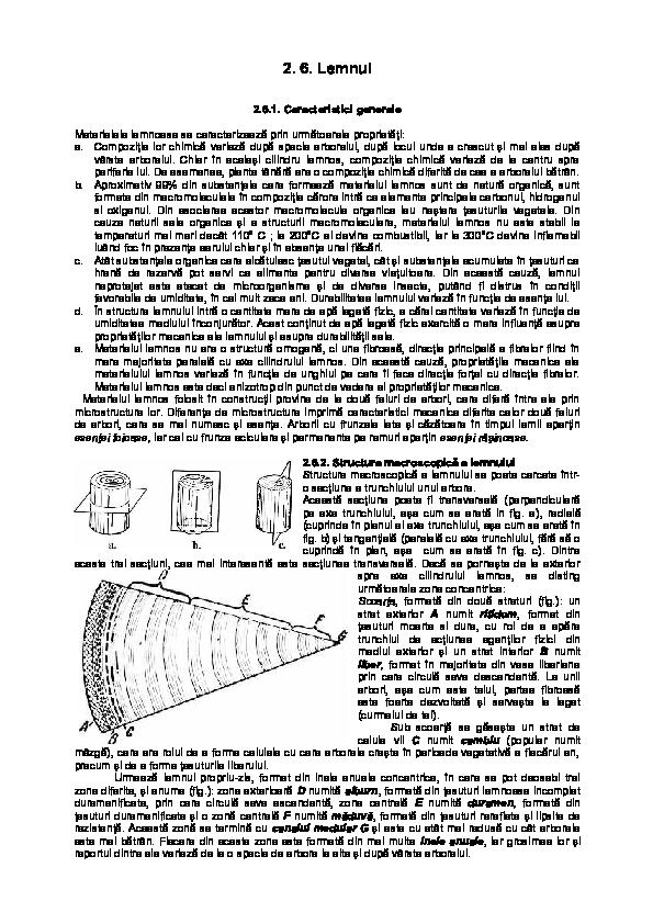 x9 arzătoare de grăsimi termoburn