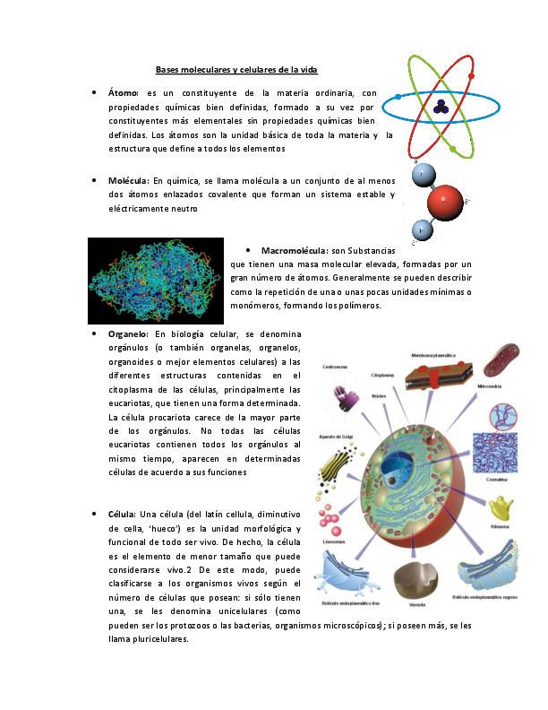 Doc Bases Moleculares Y Celulares De La Vida Alma Serrano