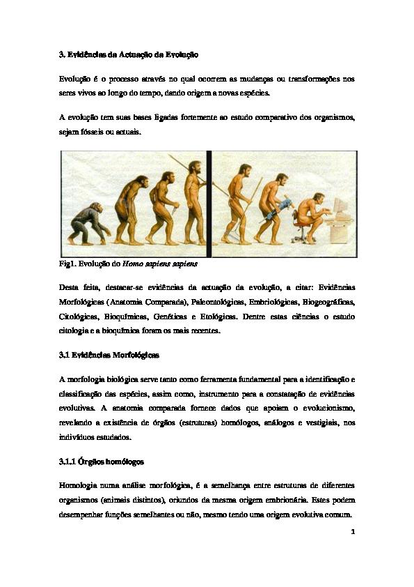 Edências Da Actuação Da Evolução Alberto F T Saué