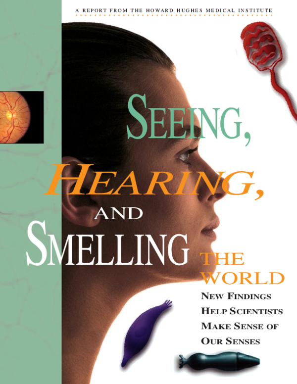 Pdf Seeing Hearing Smelling And The World Thayalam Pillai Academia Edu