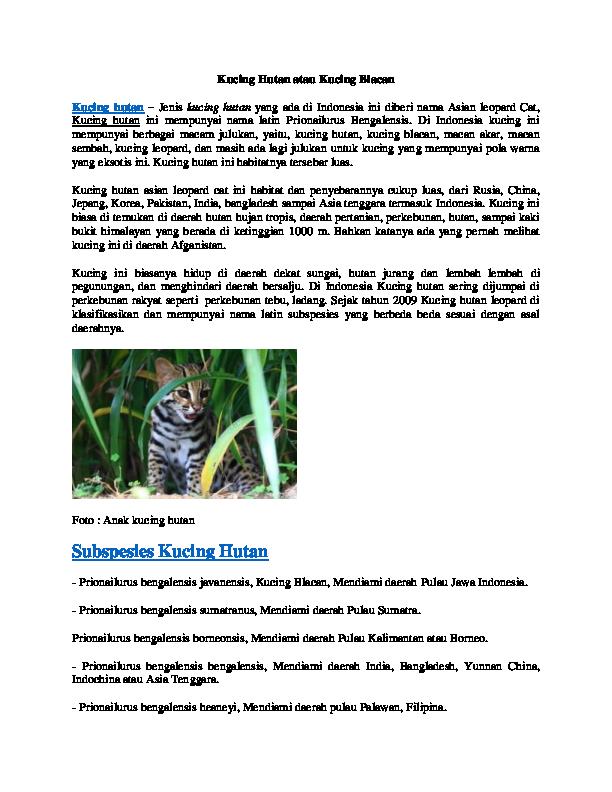 Doc Kucing Hutan Atau Kucing Blacan Tazesiru Cats Academia Edu