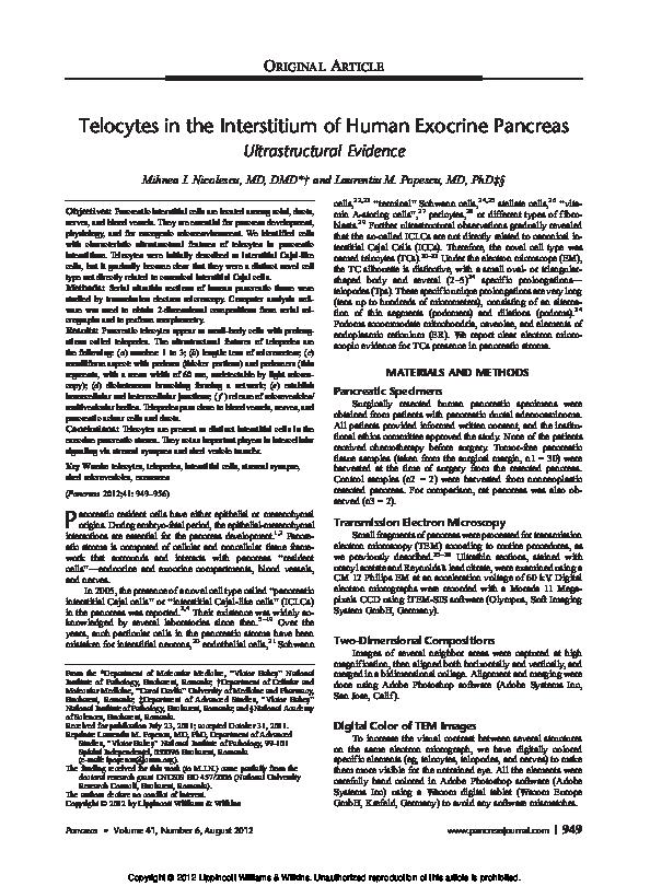 Pdf Telocytes In The Interstitium Of Human Exocrine Pancreas Ultrastructural Evidence Mihnea I Nicolescu Academia Edu