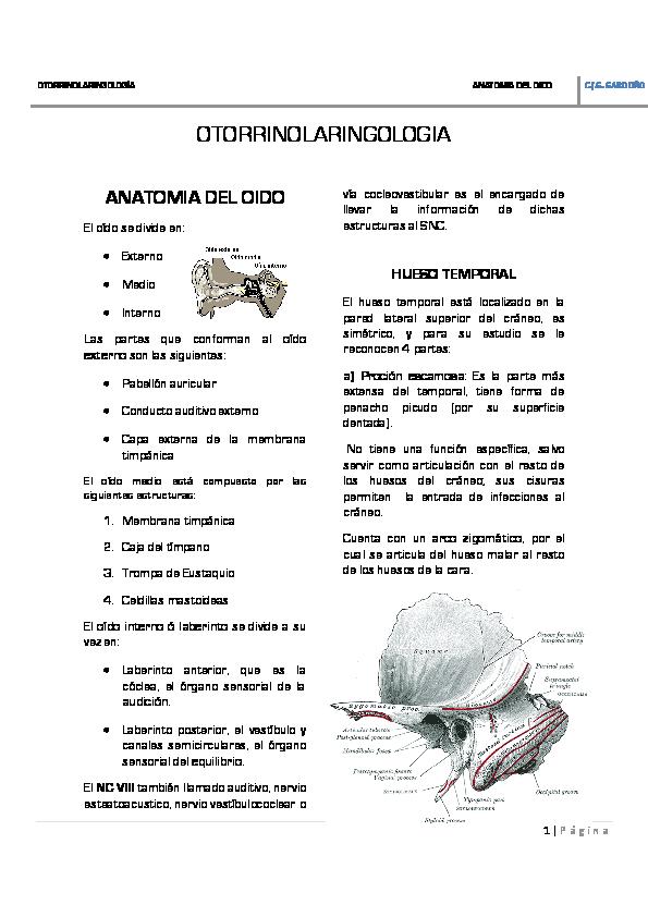 PDF) OTORRINO | Irving diaz - Academia edu