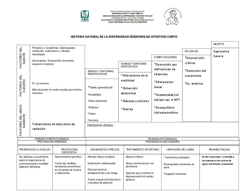 Doc Formato De Historia Natural Erick Jaramillo Academia Edu