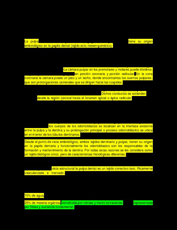 DOC) COMPLEJO DENTINO PULPAR RUDDY BRINNER | Edmar Rodriguez