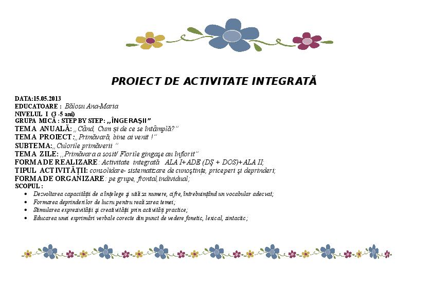 Doc Proiect Didactic Ana Maria Academiaedu