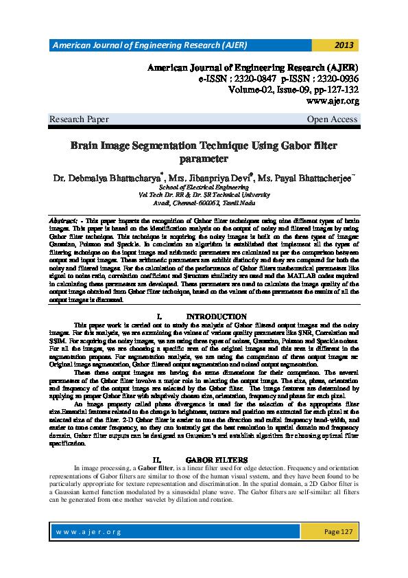 PDF) Brain Image Segmentation Technique Using Gabor filter