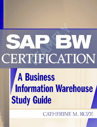 PDF) wily sap | ch wang - Academia edu