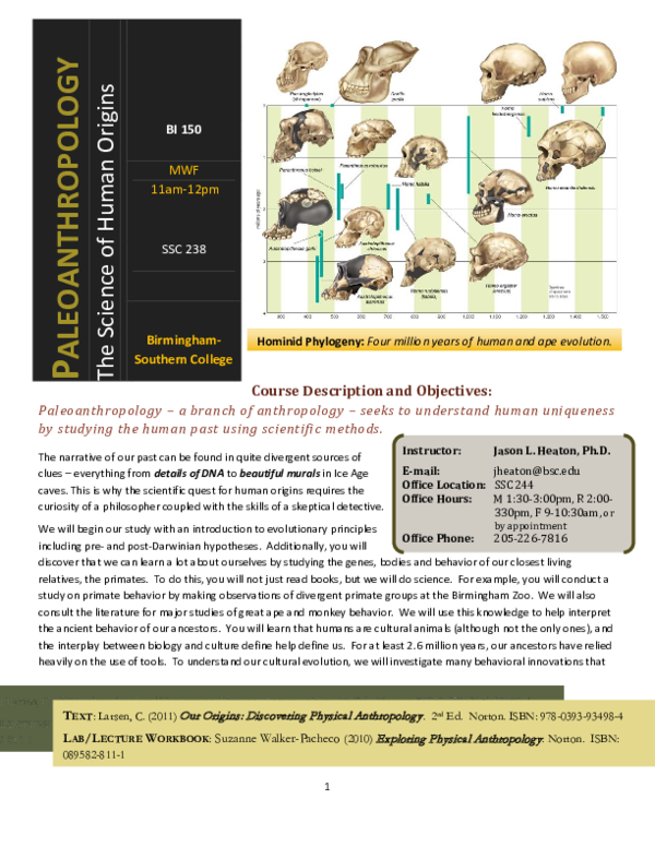 Our Origins Discovering Physical Anthropology Pdf
