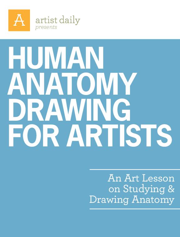 PDF) An Art Lesson on Studying & Drawing Anatomy Human anatomy