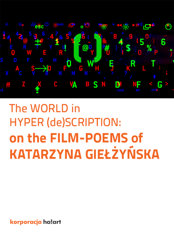 The World In Hyperdescription On The Film Poems Of
