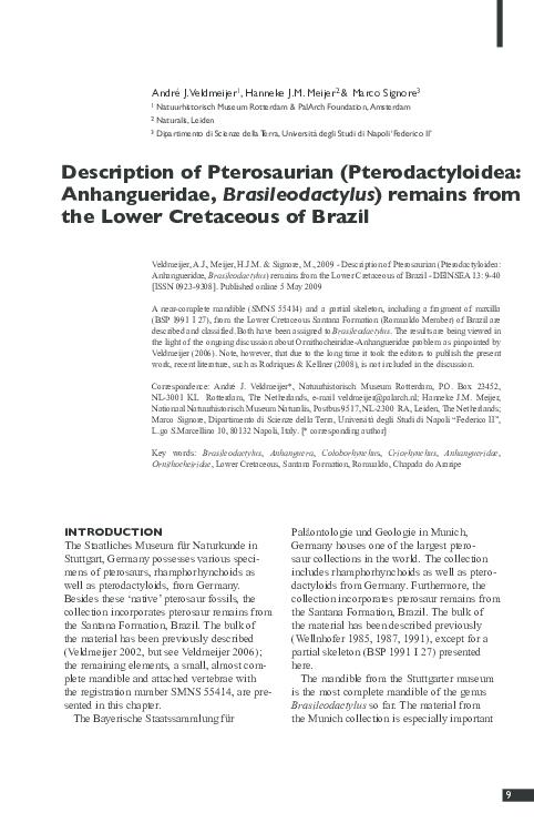 PDF) Description of Pterosaurian (Pterodactyloidea