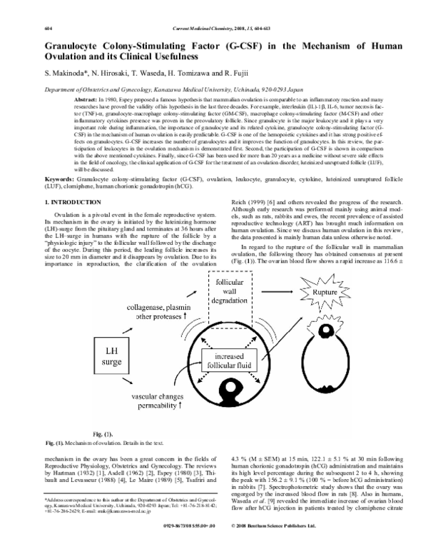 PDF) Granulocyte Colony-Stimulating Factor (G-CSF) in the Mechanism