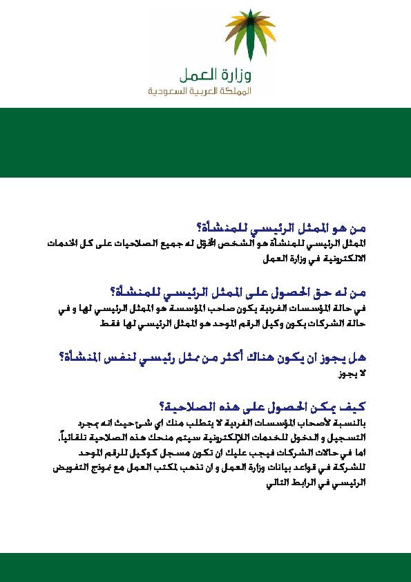 Pdf الممثل الرئيسي للمنشأة Ali Qaid Academia Edu