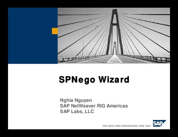 PDF) SAP NetWeaver SPNEGO | yohan hernandez - Academia edu