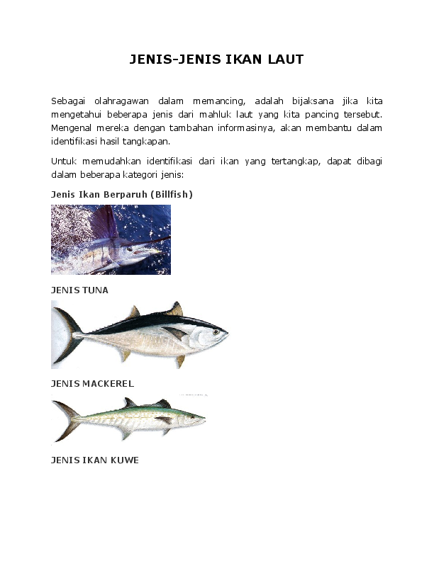 Doc Jenis Jenis Ikan Jumansyah Sila Academia Edu