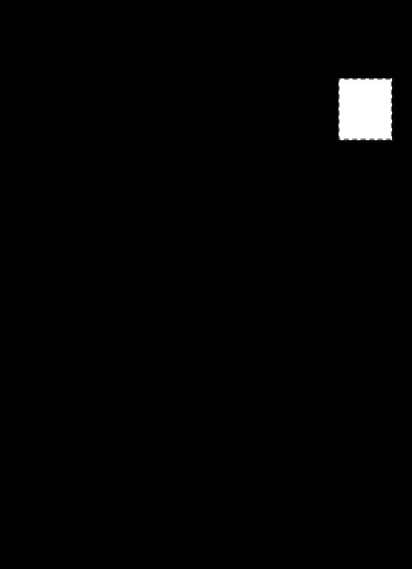 contoh cv beasiswa