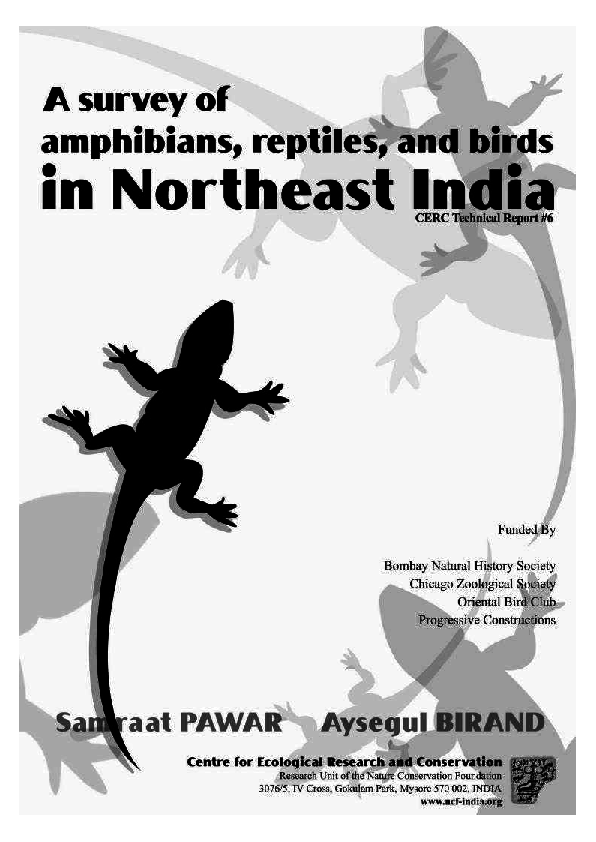 Animals & Dinosaurs Junior Jungle Reptile Complete In Specifications