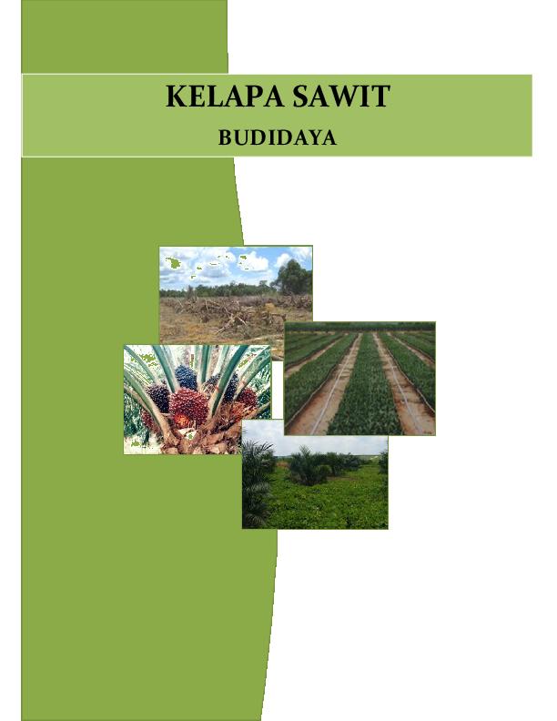 Pdf Kelapa Sawit Budidaya Harritz Rizaldy Academia Edu