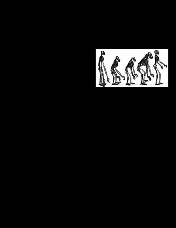PDF) Introduction to Biological Anthropology Syllabus   Sara