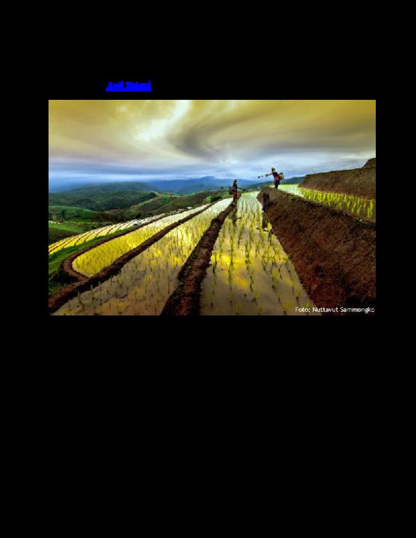 Arti Petani Sebuah Maha Karya Info Pangan Pertanian Energi Sha