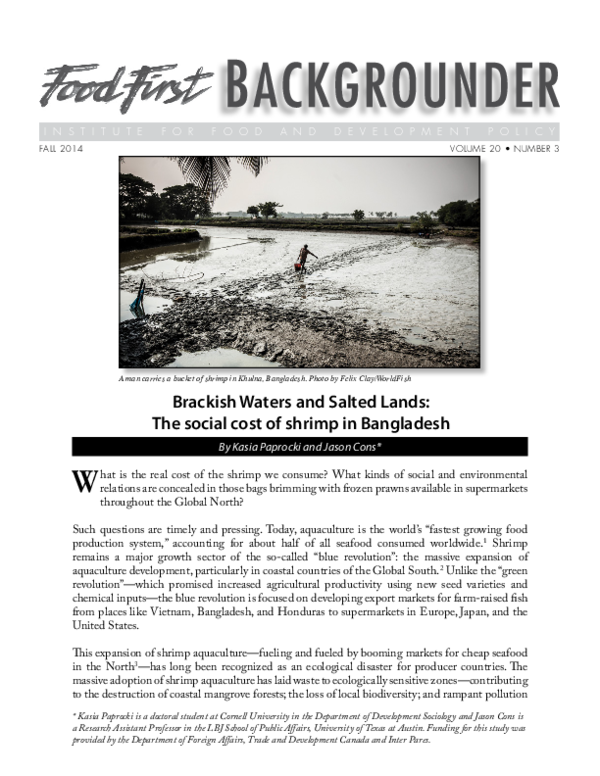 PDF) Brackish Waters and Salted Lands: The social cost of