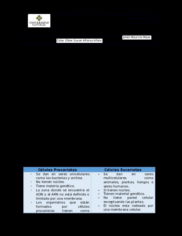 Doc Laboratorio N 1 La Célula Estructura Funcional Y