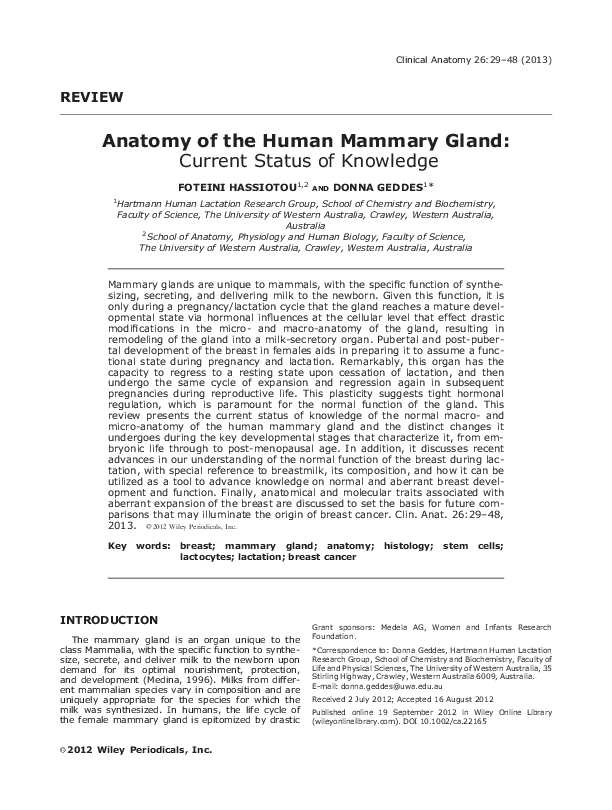 Pdf Anatomy Of The Human Mammary Gland Current Status Of