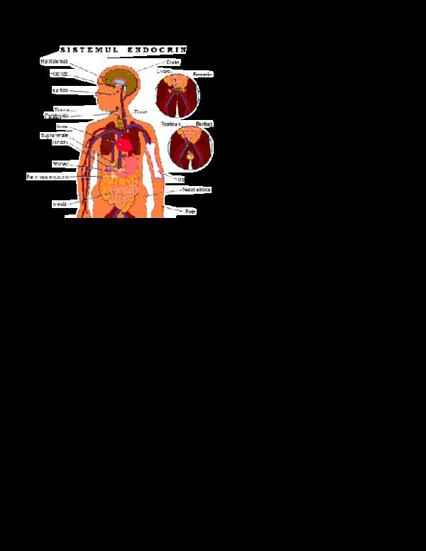 Anorexia: simptome, cauze, diagnostic, tratament | Bioclinica