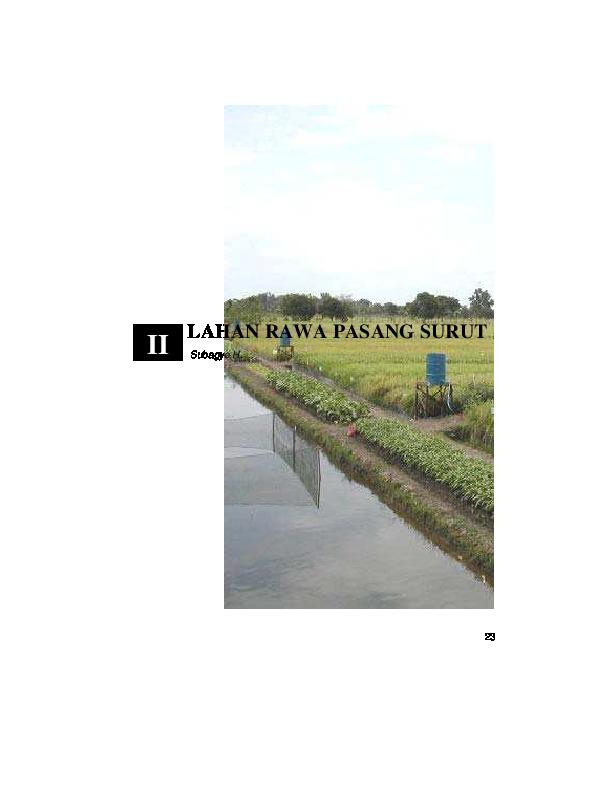 PDF) Lahan Rawa  dbc29ae524