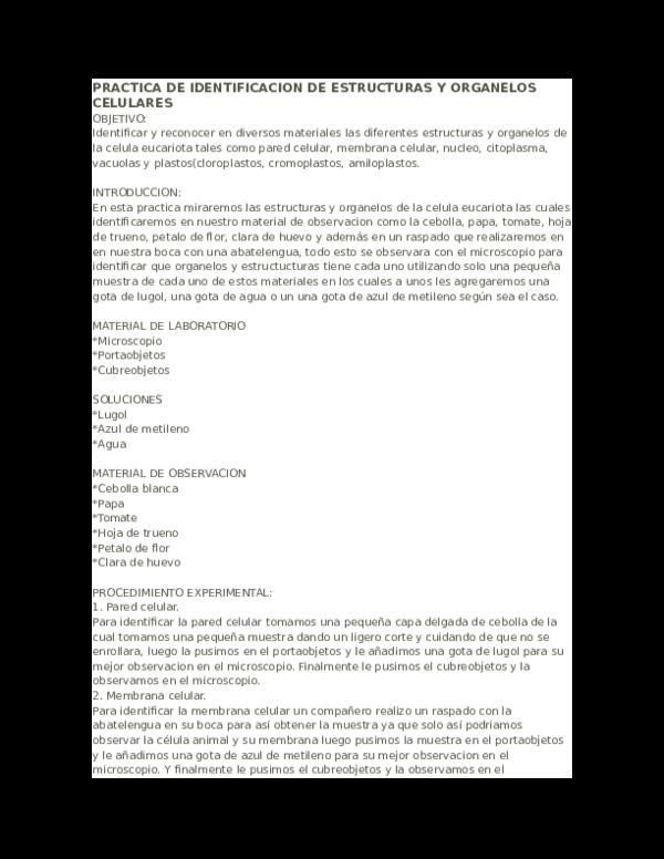 Doc Practica De Identificacion De Estructuras Y Organelos
