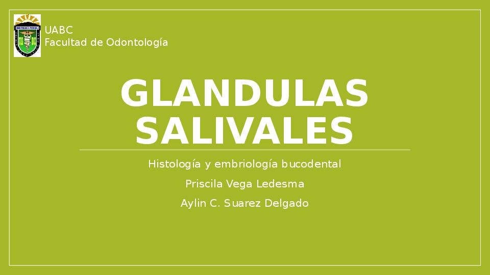 glandulas salivales y su conducto excretor