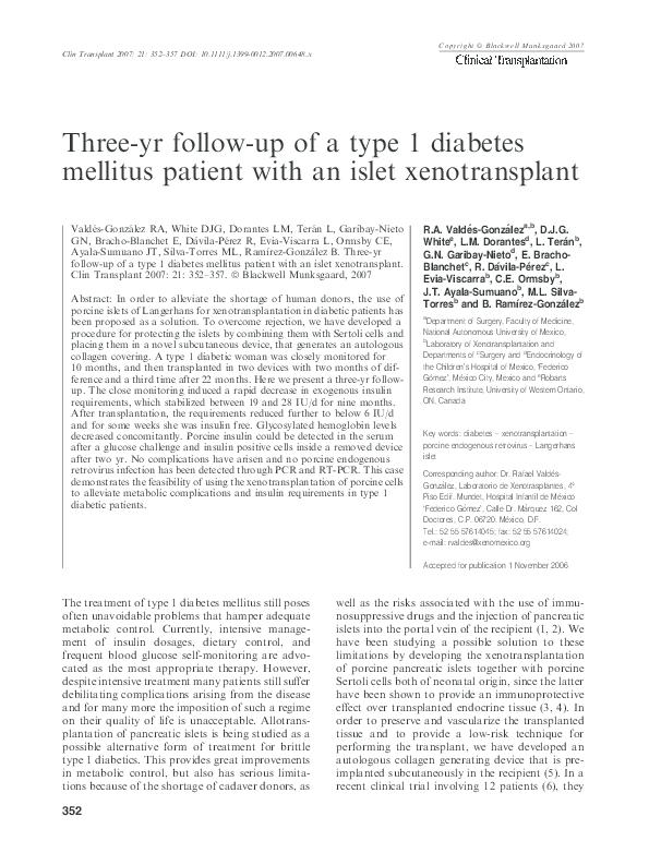 diabetes xenotrasplante