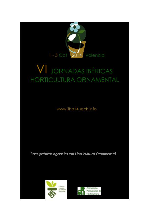 Margarita africana del cabo semillas 180 aprox Dimorphoteca sinuata