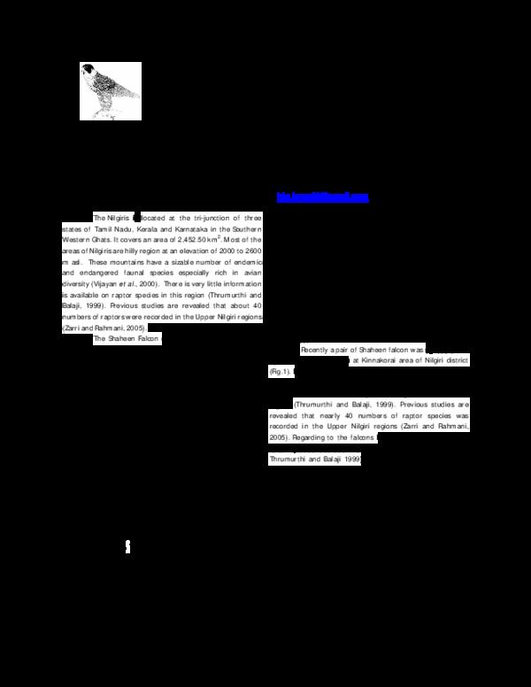 PDF) Nesting of Shaheen Falcon (Falco peregrinus peregrinator) in