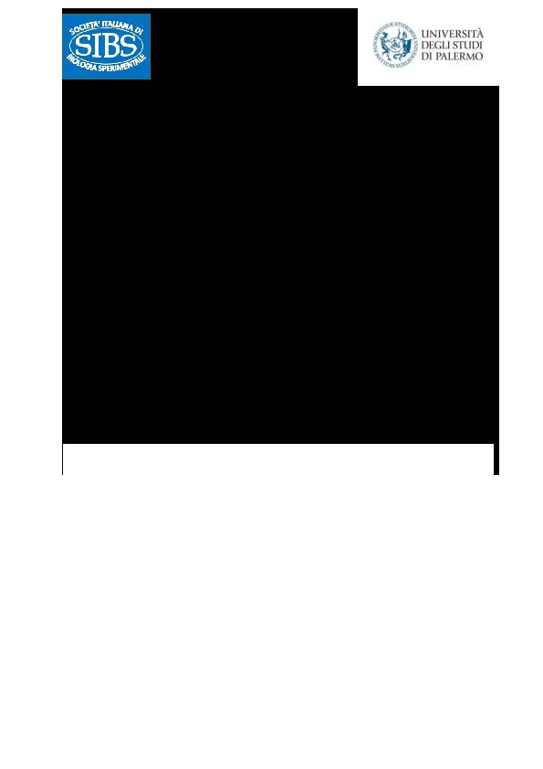 E85//50 Mattarello diametro 4,2 cm lunghezza 50 cm Cod